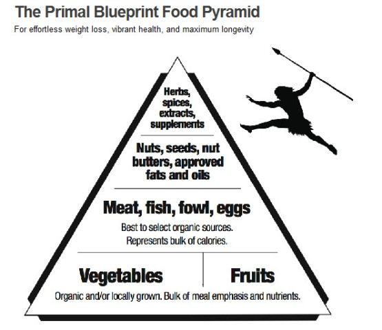Beprimal the meaning behind be primal my shopping list as you can see the bulk of your food comes from the protein and vegetables the other spectrums of this food pyramid are with moderation malvernweather Choice Image